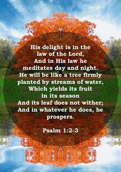Psalm 1:2-3 – God is Calling