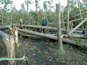 U.S. FOREST SERVICE PHOTO -- BWCAW blowdown on July 4, 1999.